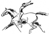 Equus Agility